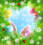 Vector Easter background with rabbit ears, eggs, grass and blue Stock Photo