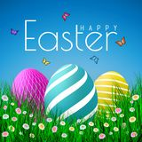 Vector Easter eggs with grass, butterfly and flowers isolated on a blue background. Element for celebratory design stock illustration