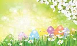Vector Easter eggs in grass  and daisies. Vector Easter eggs in grass  and daisies, blossoming apple tree. Easter background Royalty Free Stock Photo