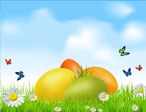 Vector Easter eggs on a green field with daisies. And a blue sky Royalty Free Stock Image