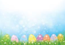 Vector Easter eggs in green  grass. Vector Easter eggs in green  grass,   Easter background Royalty Free Stock Image