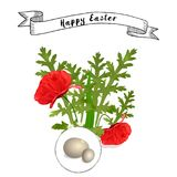 Vector Easter floral background with poppies. And eggs Vector Illustration