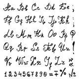 Vector echt hand kalligrafisch Alfabet royalty-vrije illustratie