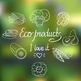 Vector Eco background Stock Photography