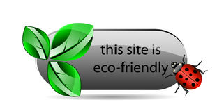 Vector eco button with green leaf and ladybug Royalty Free Stock Image