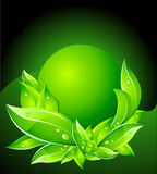 Vector Eco Concept with Leafs Stock Photography