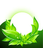 Vector Eco Concept with Leafs Stock Photo