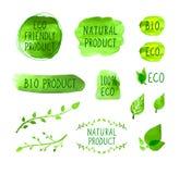 Vector Eco-Ikonen, Aquarell-Gestaltungselemente, grüner Logo Set, der auf weißem Hintergrund, natürliches Bioprodukt lokalisiert  lizenzfreie abbildung