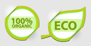 Vector eco label Stock Photos