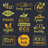 Vector eco,organic,bio logo cards templates. Handwritten healthy eat icons set. Vegan, natural food and drinks signs. Farm market, store labels collection. Raw Stock Images