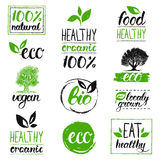 Vector eco, organic, bio logos. Handwritten healthy eat logotypes set. Vegan, natural food and drinks signs. Farm market, store icons collection. Raw meal Stock Images
