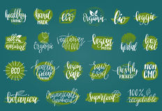 Vector eco, organic, bio signs. Vegan, healthy food illustrations set for cafe, restaurant badges, tags, packaging etc. Royalty Free Stock Image