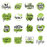 Vector eco, organic, bio signs. Vegan, healthy food illustrations set for cafe, restaurant badges, tags, packaging etc. Royalty Free Stock Photography