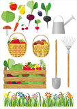 Vector editable image of gardening and vegetables. Vector editable image about gardening and vegetables Royalty Free Stock Photo