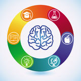 Vector education and science concept Stock Images