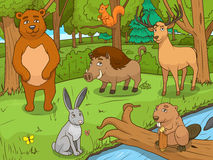 Vector educativo del juego de los animales de la historieta del bosque Imagenes de archivo