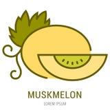 Vector Eenvoudig Logo Template Muskmelon Royalty-vrije Stock Foto's