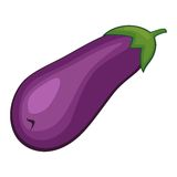Vector eggplant Stock Photo
