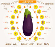 Vector eggplant, infographics. Stock Images