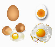 Vector of eggs Royalty Free Stock Photo