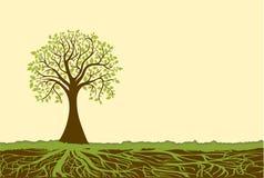 Vector el árbol Foto de archivo