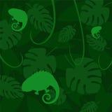 Vector el camaleón en un fondo oscuro de hojas Fotos de archivo libres de regalías