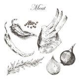 Vector el dibujo de la mano de la carne del filete con pimienta y Imagenes de archivo