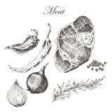Vector el dibujo de la mano de la carne del filete con pimienta y Fotografía de archivo libre de regalías