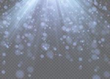Vector el efecto descendente de la nieve aislado sobre fondo transparente con el bokeh borroso Fotografía de archivo libre de regalías
