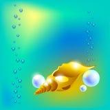 Vector el ejemplo con la concha marina hermosa de oro y repiques Foto de archivo libre de regalías