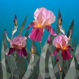 Vector el ejemplo con los triángulos púrpuras hermosos de la flor del iris Apenas llovido encendido stock de ilustración