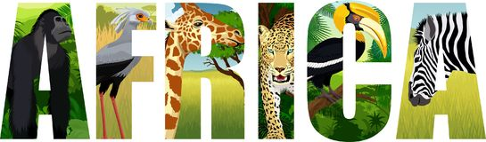 Vector el ejemplo de África con la jirafa, el gorila, el leopardo, el secretaria-pájaro, la cebra y el gran hornbill ilustración del vector