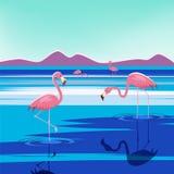 Vector el ejemplo de flamencos rosados en el lago en la puesta del sol, aislado Imagen de archivo