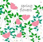 Vector el ejemplo de flores y de hojas rosadas del verde Fotos de archivo libres de regalías