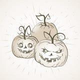 Vector el ejemplo de Halloween del vintage con las calabazas dibujadas mano Foto de archivo libre de regalías
