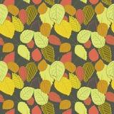 Vector el ejemplo de hojas coloridas en fondo oscuro Imagenes de archivo