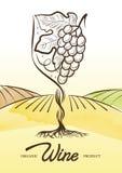 Vector el ejemplo de la acuarela de la uva de la vid y del campo rural adentro Fotografía de archivo