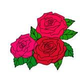 Vector el ejemplo de las rosas rojas para la decoración de la tarjeta de felicitación stock de ilustración