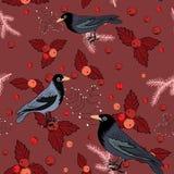 Vector el ejemplo de pájaros azules con las bayas de la Navidad en fondo rojo Modelo inconsútil Fotografía de archivo libre de regalías
