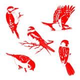 Vector el ejemplo de pájaros rojos en el fondo blanco Imagen de archivo libre de regalías