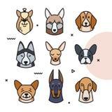 Vector el ejemplo de una cabeza de diversas razas libre illustration