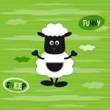 Vector el ejemplo de una oveja linda del bebé en el fondo rayado verde con las nubes blancas Diseño de la camiseta para los niños Imágenes de archivo libres de regalías