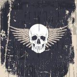 Vector el ejemplo del cráneo dibujado mano humana realista con las alas libre illustration