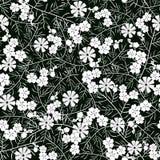Vector el ejemplo del estampado de plores blanco y negro inconsútil Imagenes de archivo