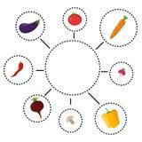 Vector el ejemplo del infographics sano de la consumición con los iconos libre illustration