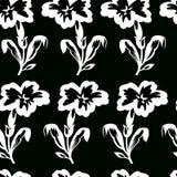Vector el ejemplo del modelo inconsútil de las flores blancas y negras Imágenes de archivo libres de regalías