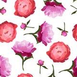 Vector el ejemplo del modelo inconsútil de las flores coloridas de las peonías Imágenes de archivo libres de regalías