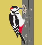 Vector el ejemplo del pájaro de la pulsación de corriente en un árbol Imagen de archivo