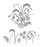 Vector el ejemplo del ramo hecho de wildflowers hermosos Fotos de archivo libres de regalías