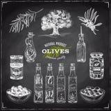 Vector el ejemplo dibujado mano con las aceitunas y el aceite de oliva Imagen de archivo